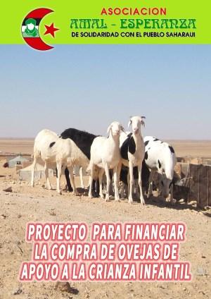 AMAL proyecto compra ovejas para lactancia 1w